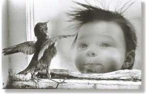 b'day _bird and kid